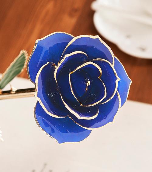 蓝色绿叶子单枝花