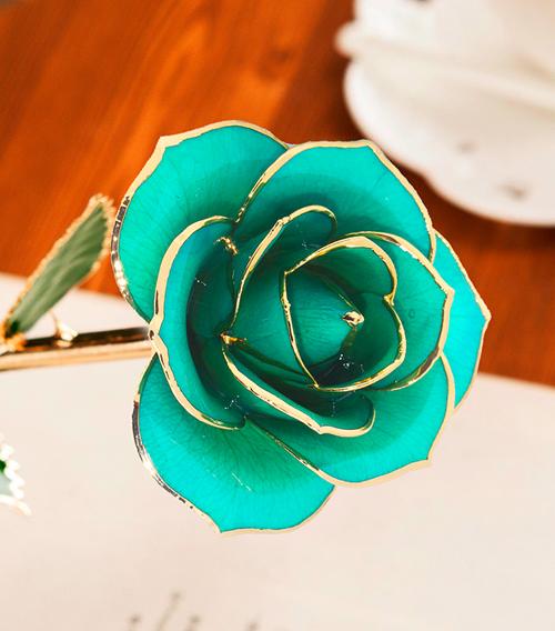 天蓝色绿叶子单枝花