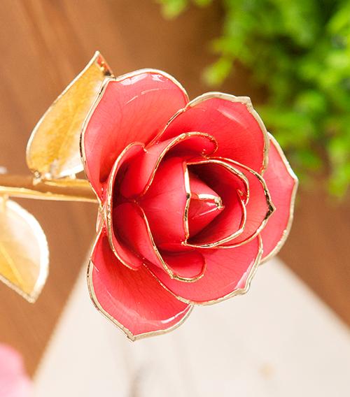 粉色金叶子单枝花
