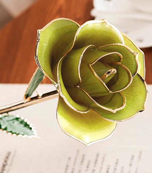 果绿色绿叶子单枝花