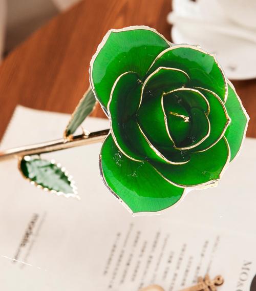 深绿色绿叶子单枝花