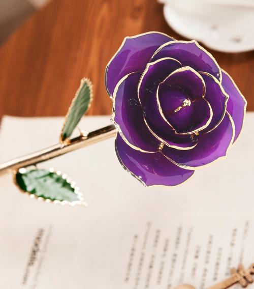 紫色绿叶子单枝花