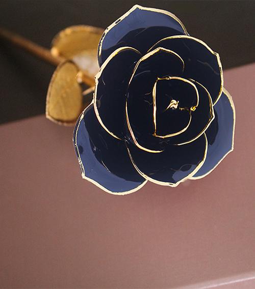 黑色金叶子单枝花