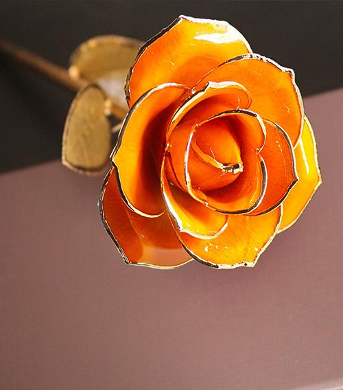 橙色金叶子单枝花