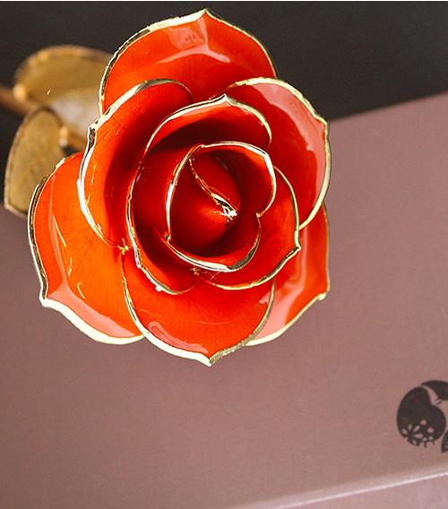 桔红色金叶子单枝花