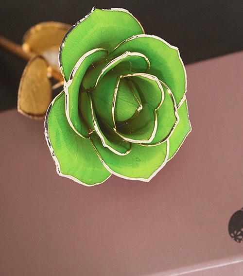 浅绿色金叶子单枝花