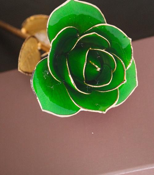 深绿色金叶子单枝花